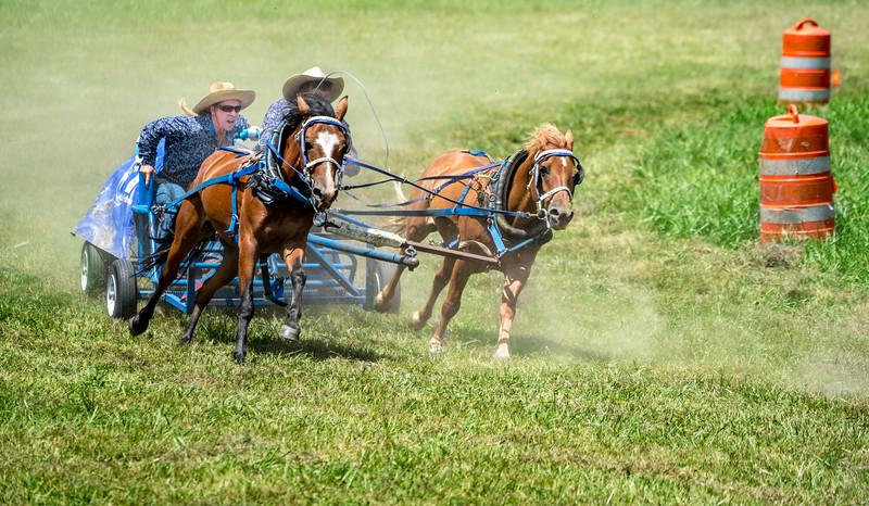 2017-07 Chuck Wagon RaceILCE-7RM2-20170729-DSC07118-2.jpg