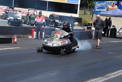 Pro Stock Sled Action