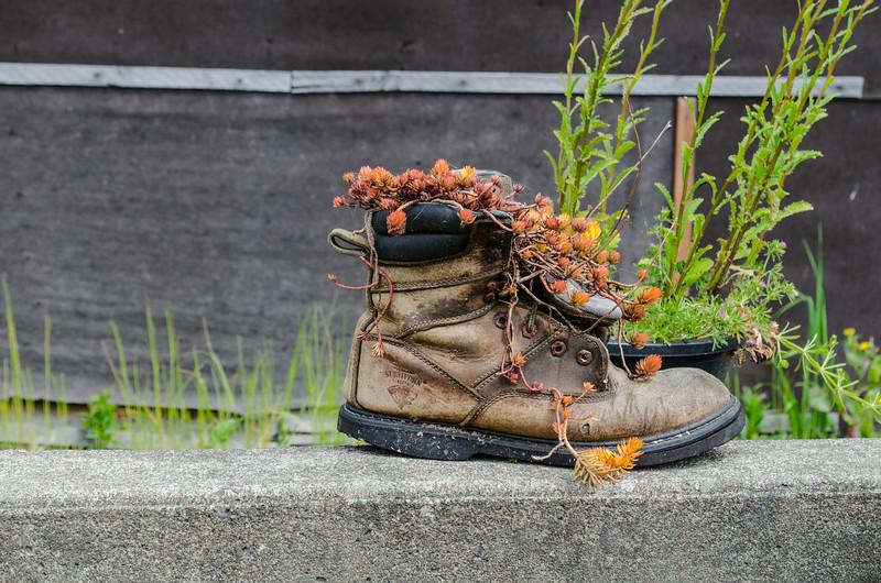 boot flower pot 1.jpg