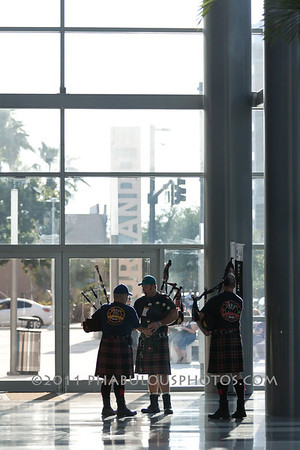 Tampa Bay Storm @ Orlando Predators 5-6-11 - 2011