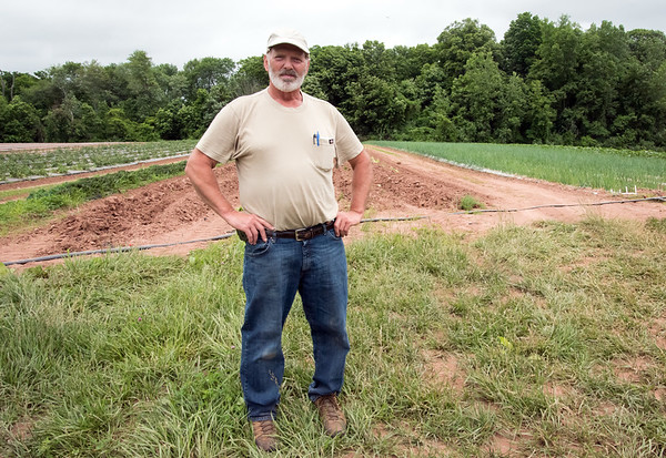 06/14/18 Wesley Bunnell | Staff Owner and farmer Steve Bengston from Cold Spring Brook Farm in Berlin stands in front of one of his many fields.