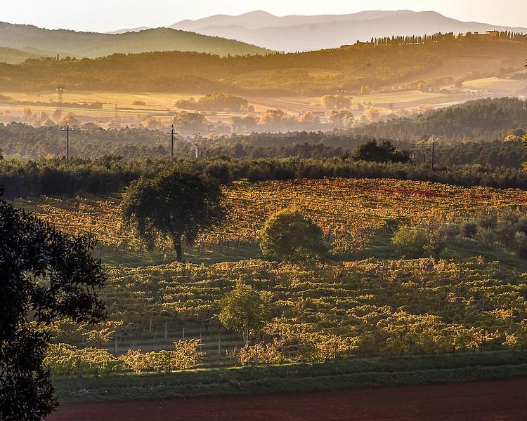 Siena Chianti15.jpg