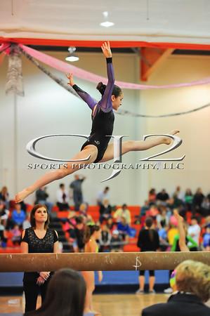 4-6-2013 Level 7 Gymnastics States