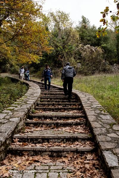 במדרגות.jpg