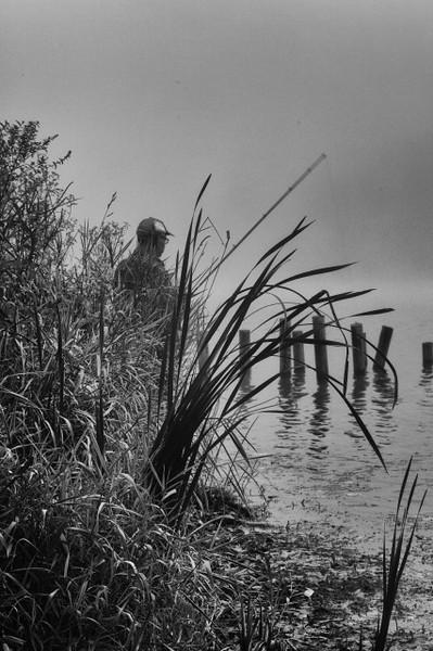 morning_fog_marsh_creek_23_20141019_1975907436.jpg