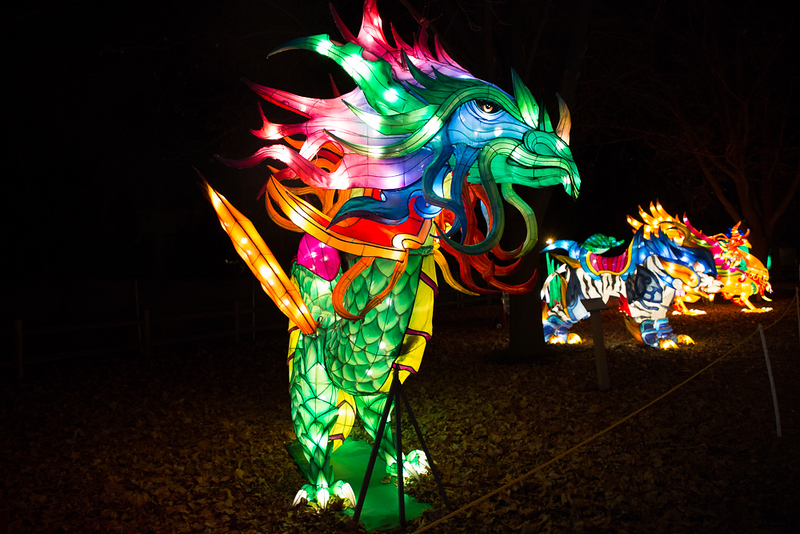 dragon lights 2018-7952.jpg
