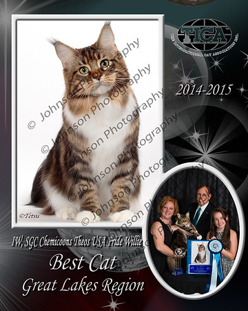 Award Composite Gallery