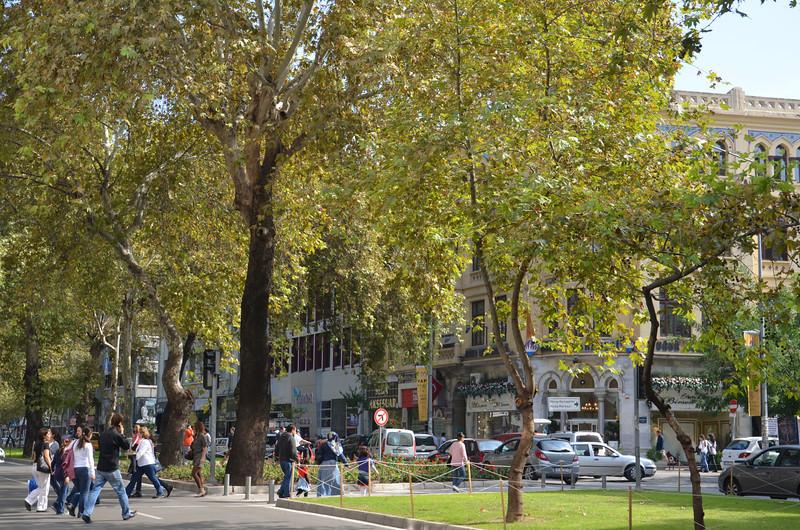 DSC_1910-street-park.JPG