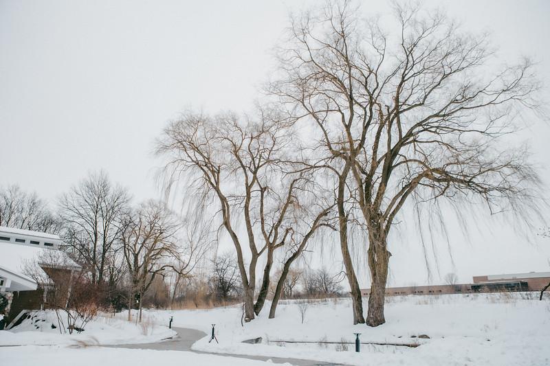 AVS_EcoPreserve_Winter2021-1.jpg