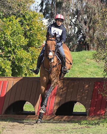 Fresno County Horse Park February 2019