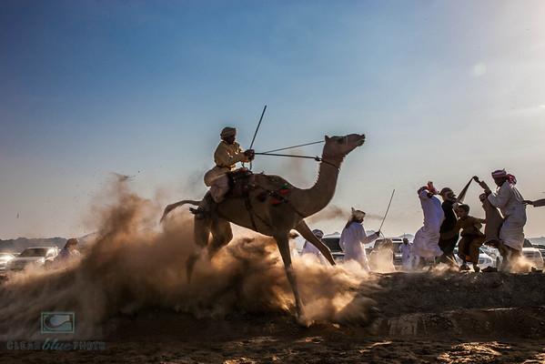 Camel Show