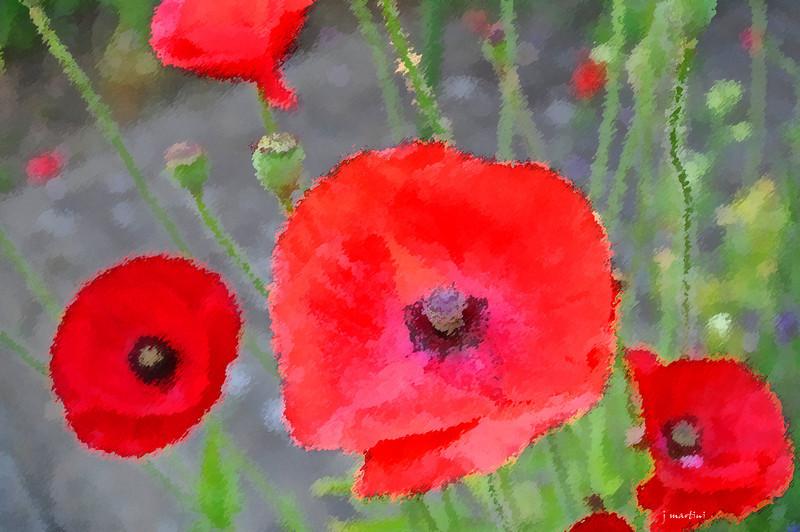 dream gardens 2 2-5-2011.jpg