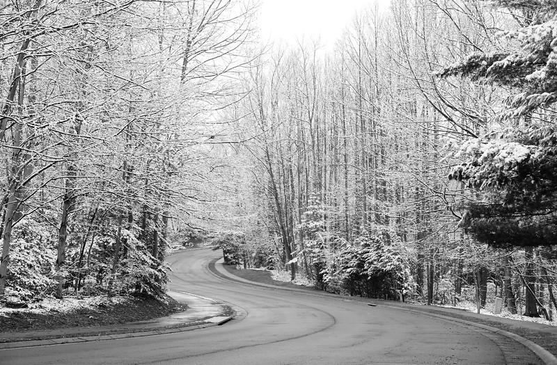 20160304 025 March snow day bw.jpg