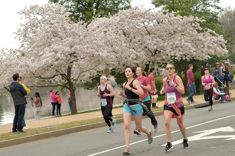 2019 Credit Union Cherry Blossom 5K Run-Walk