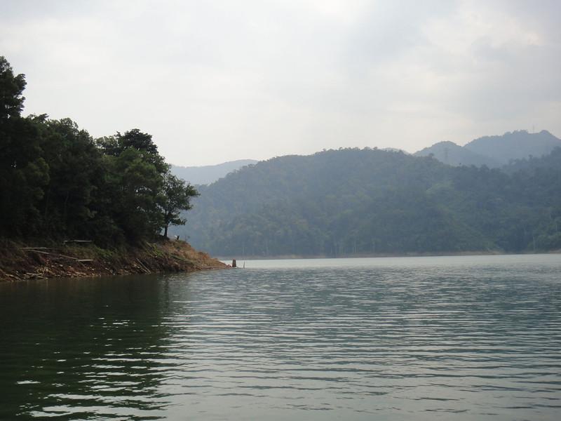 Belum Rainforest (1).JPG
