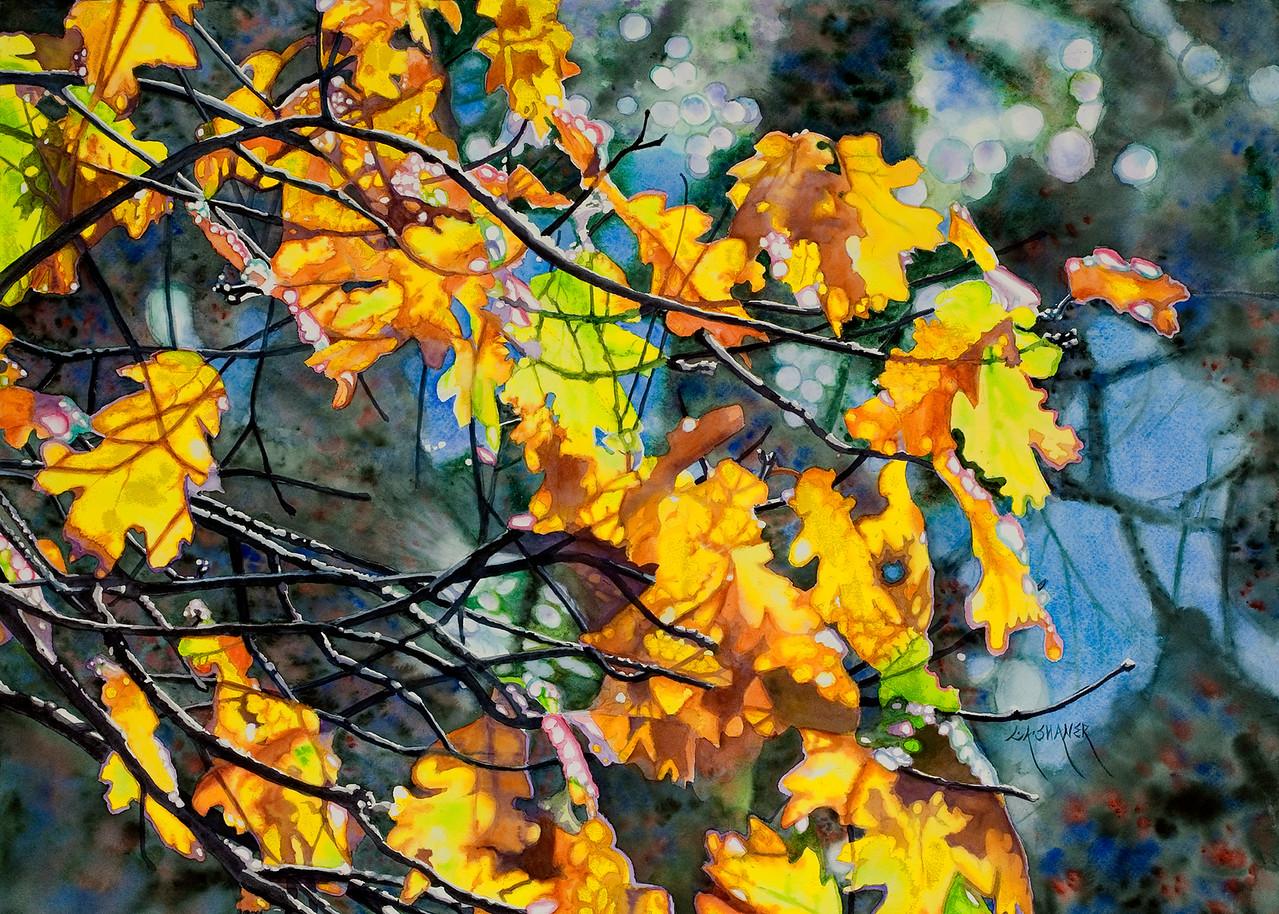"""<H2>AUTUMN FIRE</h2> 22"""" x 30"""" Pure Transparent Watercolor"""