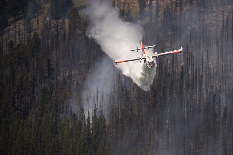 Nethker Fire in Idaho by US Forest Service 2019_08_10.jpeg