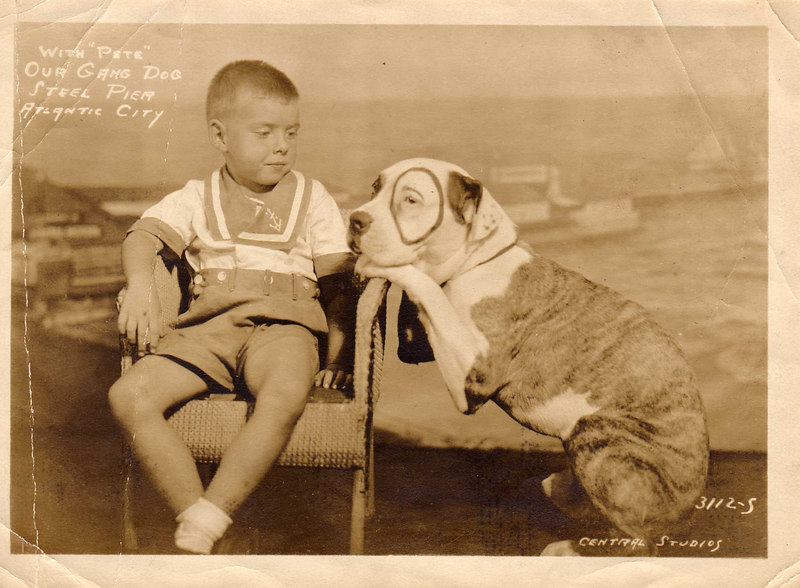 """Harvey with """"Pete,"""" the Our Gang Dog, taken on the Steel Pier, Atlantic City, about 1934"""