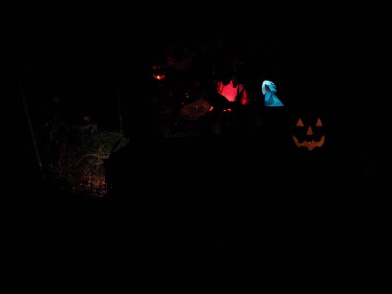 Halloween 27.JPG