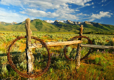 Grand Prize award-winning Ruby Mountain Landscapes