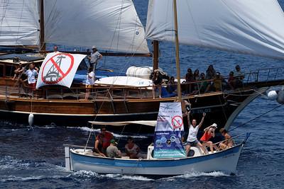 Flotilla Rainbow en Ibiza