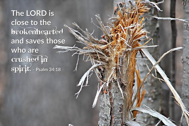19_Psalm34-18_BS_2013-3-26b.jpg