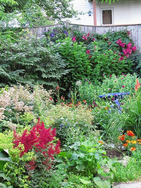 garden-2009-07-0772_std.jpg
