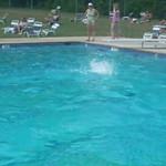 Let's Go Swimming