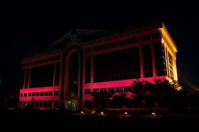Pink Chesapeake City Hall