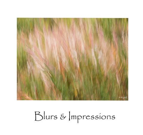 Blurs and Impressions
