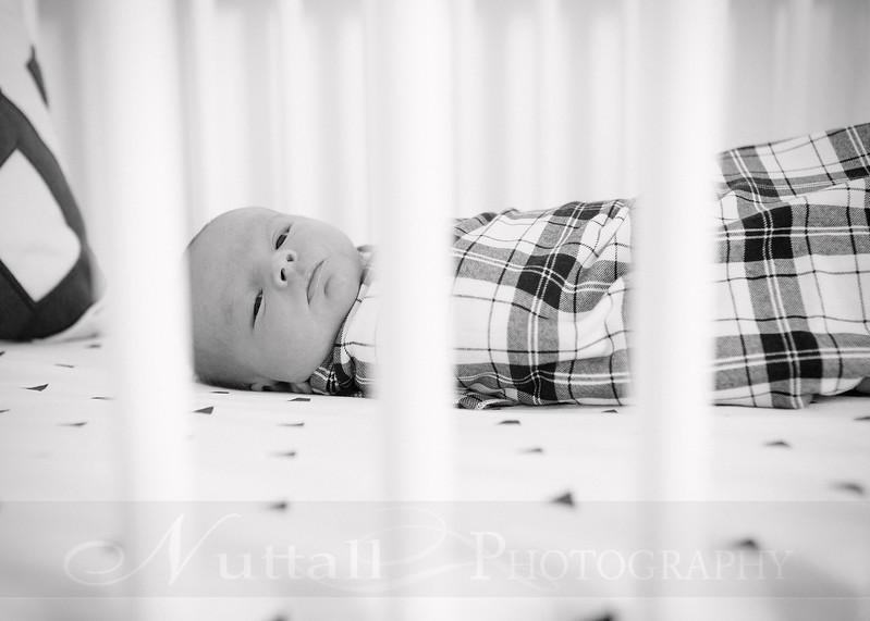 Henry Newborn 76bw.jpg