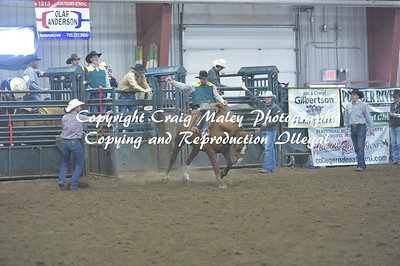 PERF 2 SADDLE BRONC 10-22-2016