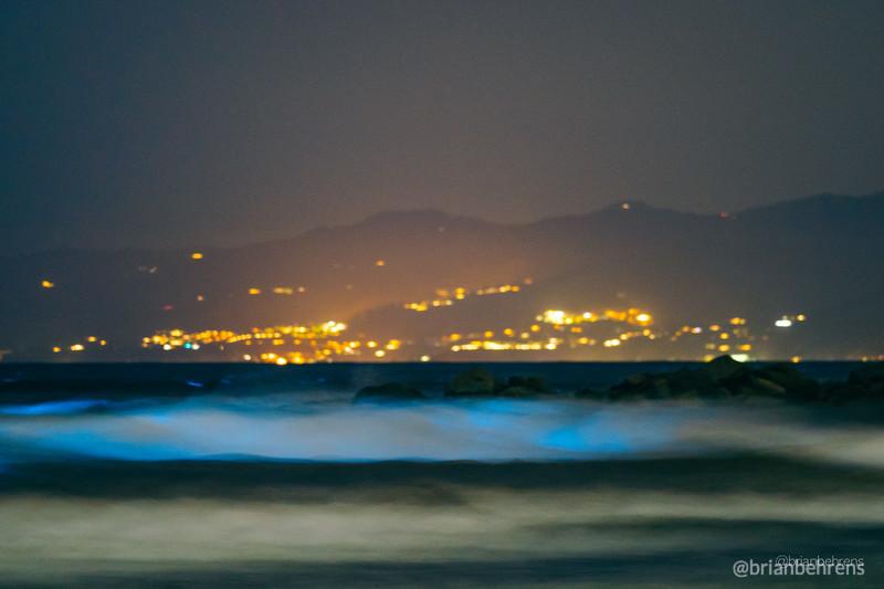 2020-05-02-bioluminescent-waves-6.jpg