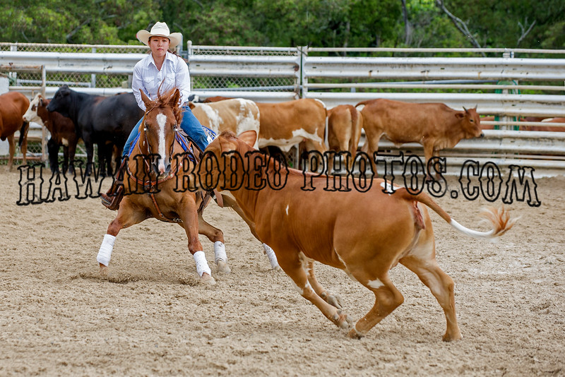 PERFORMANCE HORSE SERIES JULY 30 2011