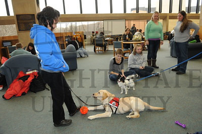 12756 Fuzz Therapy in the Dunbar Library 12-9-13