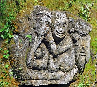 Bali Untamed