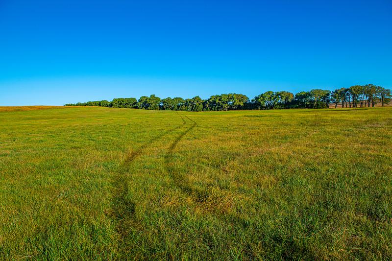 Horn Ranch-1665.jpg