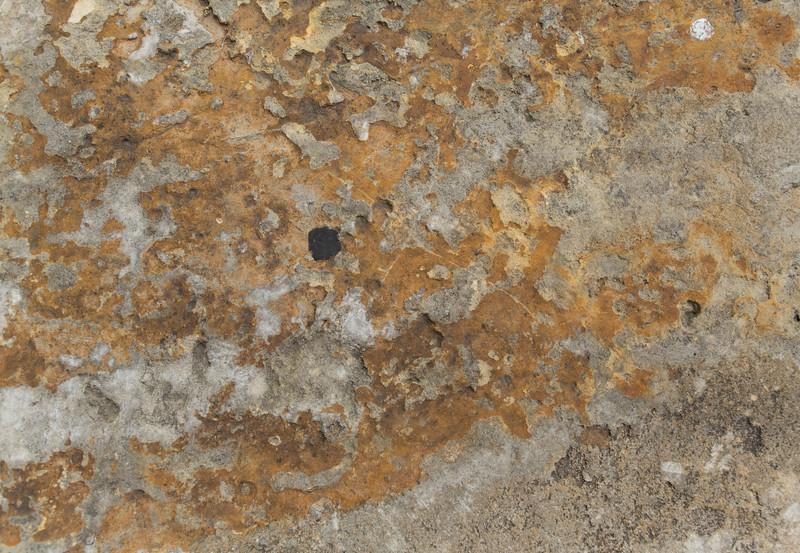 Stone BH5A8564.jpg