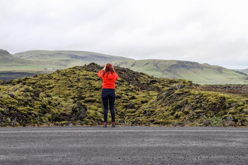 Iceland (135 of 149).jpg