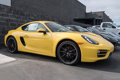Carlsen Porsche Concours, August 2015