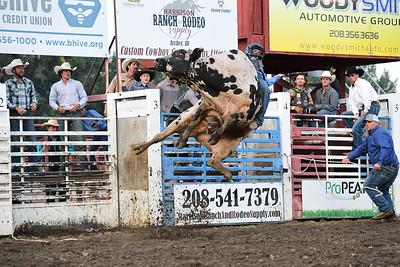 Madison County Bull Wars