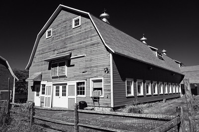 Holcomb Farm, 2012_a la, Ansel