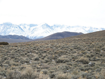 Death Valley December 2007