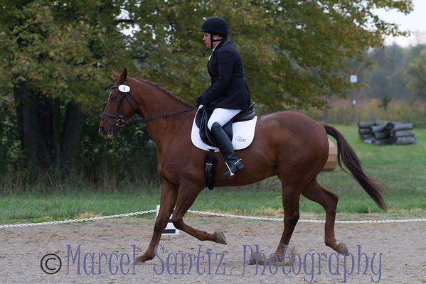Events-Equestrian