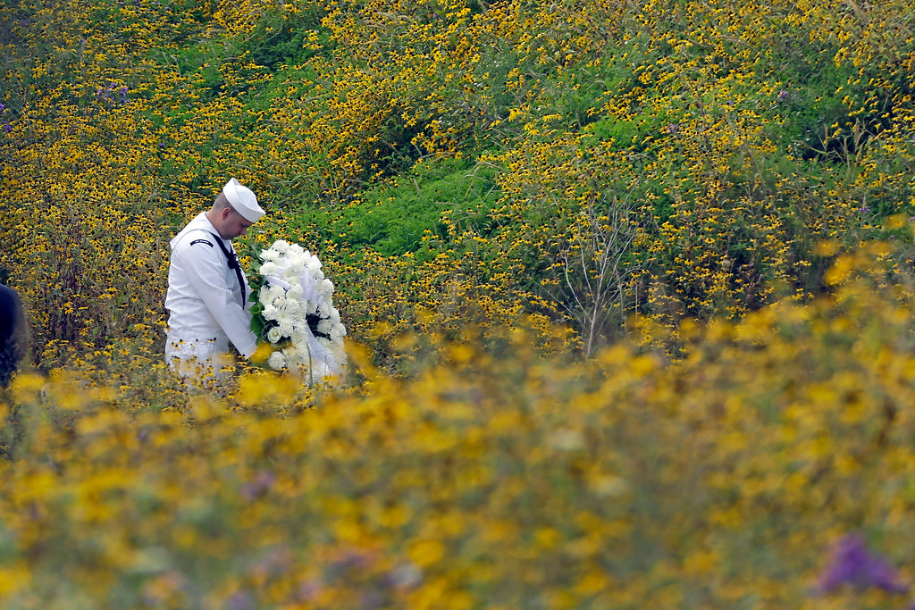. Navy Quartermaster Matthew Konchan of Johnstown, Pa., stands in a field of black-eyed Susan as he waits to participate in a wreath laying with Secretary of the Interior Sally Jewell during a memorial service at the Flight 93 National Memorial on Wednesday, Sept. 11, 2013 in Shanksville. (AP Photo/Gene J. Puskar)