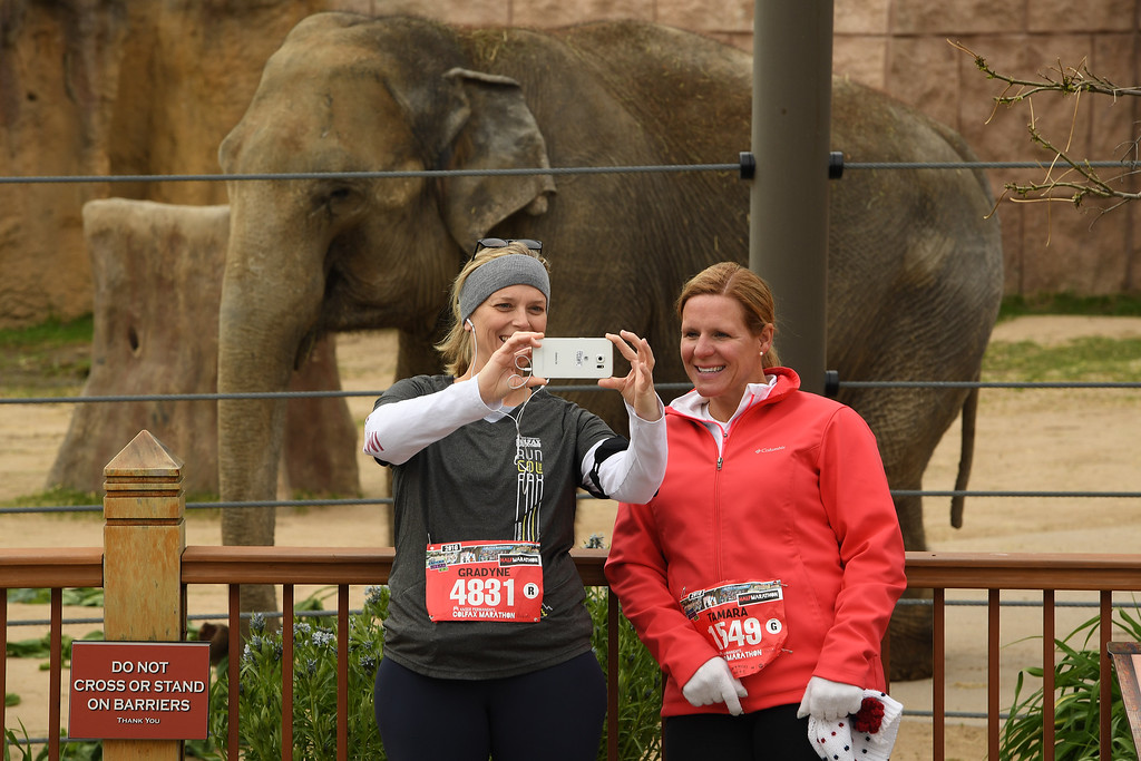 . DENVER, CO - MAY 15: Runners Gradyne Dearborn, left, and Tamara Vugrin, right, stop for a selfie in front of an elephant as they make their way through the Denver Zoo, which was around the three mile marker of the 11th annual Colfax Half Marathon on May 15, 2016 in Denver, Colorado.  Thousands of runners took part in the annual springtime race which included a marathon, a marathon relay,  a half marathon and the urban 10 miler.  (Photo by Helen H. Richardson/The Denver Post)