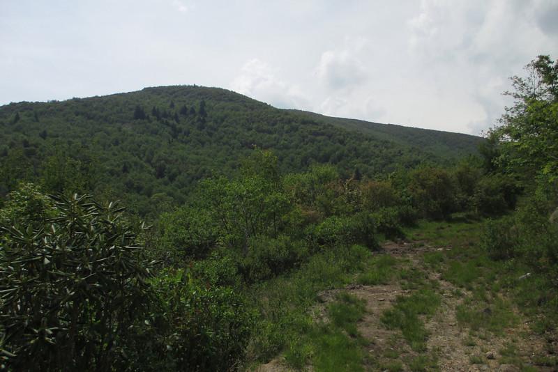 Graveyard Ridge Trail (5,400')