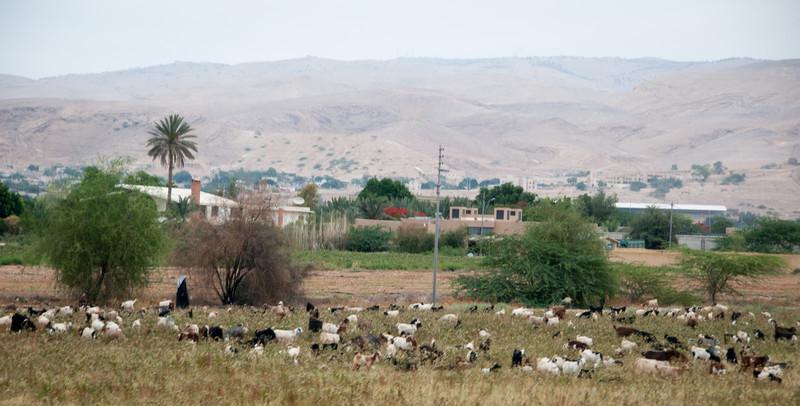 Israel_1708.jpg