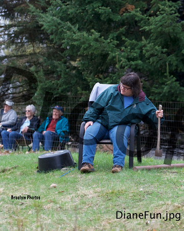 Farm Dog Trials 050419