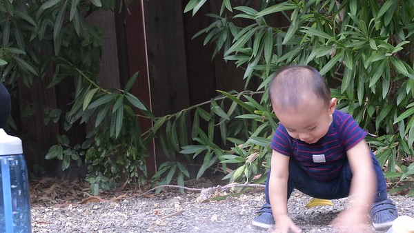 Joshua in Backyard Aug 24, 2017